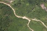 Logging road -- sabah_1687