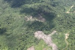 deforestation for oil palm -- sabah_1689