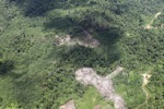 deforestation for oil palm -- sabah_1690