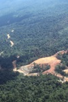 deforestation for oil palm -- sabah_1693