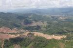 Oil palm plantation -- sabah_1700