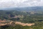 Oil palm plantation -- sabah_1701