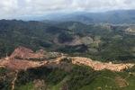 Oil palm plantation -- sabah_1702