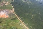 Oil palm plantation -- sabah_1715