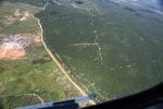 Oil palm plantation -- sabah_1719