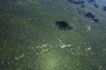 Oil palm plantation -- sabah_1726