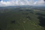 Oil palm plantation -- sabah_1728