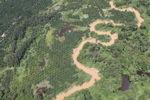 Oil palm plantation -- sabah_1741