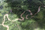 Oil palm plantation -- sabah_1749