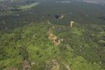 Oil palm plantation -- sabah_1777