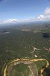 Oil palm plantation -- sabah_1787