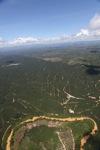 Oil palm plantation -- sabah_1788