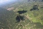 Oil palm plantation -- sabah_1797