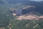 Fire burning on an oil palm plantation -- sabah_1825