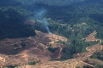 Fire burning on an oil palm plantation -- sabah_1833