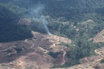 Fire burning on an oil palm plantation -- sabah_1836