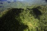 Malaysian Borneo forest -- sabah_1934