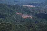 Deforestation in Borneo -- sabah_2017