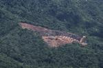Deforestation in Borneo -- sabah_2018