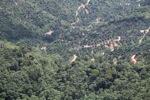Deforestation in Borneo -- sabah_2031