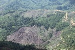 Deforestation in Borneo -- sabah_2038