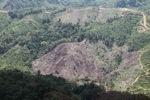 Deforestation in Borneo -- sabah_2040