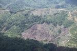 Deforestation in Borneo -- sabah_2043
