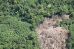 Deforestation in Borneo -- sabah_2062
