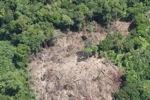Deforestation in Borneo -- sabah_2064