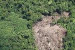Deforestation in Borneo -- sabah_2065