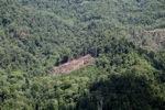Deforestation in Borneo -- sabah_2080