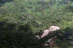Deforestation in Borneo -- sabah_2105