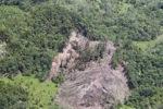 Deforestation in Borneo -- sabah_2111