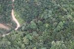 Deforestation in Borneo -- sabah_2113