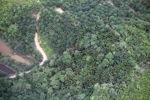 Deforestation in Borneo -- sabah_2114