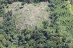 Deforestation in Borneo -- sabah_2122