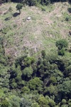 Deforestation in Borneo -- sabah_2123