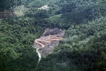 deforestation for oil palm -- sabah_2138
