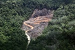 deforestation for oil palm -- sabah_2139