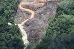 deforestation for oil palm -- sabah_2142