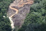 deforestation for oil palm -- sabah_2143