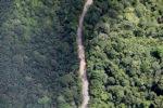 logging road -- sabah_2165