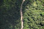 logging road -- sabah_2167