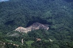 deforestation for oil palm -- sabah_2168