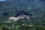 deforestation for oil palm -- sabah_2169