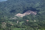 deforestation for oil palm -- sabah_2172