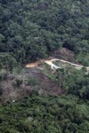 deforestation for oil palm -- sabah_2174
