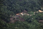 deforestation for oil palm -- sabah_2175