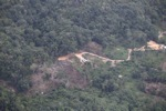 deforestation for oil palm -- sabah_2177