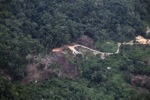deforestation for oil palm -- sabah_2178